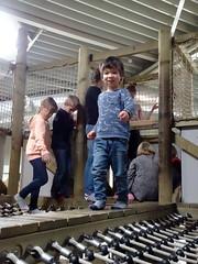 arnhem_3_053 (OurTravelPics.com) Tags: arnhem max kids jungle playground park area burgers zoo