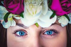 T'as d'beaux yeux tu sais ... (Alexandre66) Tags: france pyreneesorientales po perpignan portrait femme 2019 canon 6d 50mm f12 l usm couleur studio yeux bleus