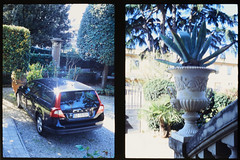 _RAK9738 (Daniele Pisani) Tags: olympus pen velvia50 costanza susanna baby sitter neve cani lea dylan macchina giardino half frame