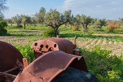 Rusty Tractor (Gér@ld) Tags: tunisia uthina oudna nature landscape oudhna