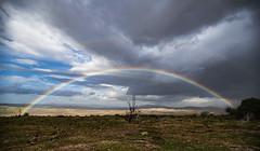 Rainbow (panos_adgr) Tags: nikon d850 landscape photography travel viotia greece winter rain horizon clouds sky earth nature rainbow