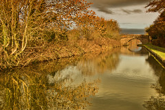 autumn on the canal (plw1053) Tags: plw1053 paullgwells tenfiftythreeimagescom tenfiftythreeimages landscape canal waterway autumn seasons foliage reflection birminghamfazeley bridge trees clouds sunlight toned towpath