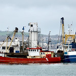 Brixham trawlers thumbnail