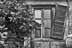 Memories, Abruzzo, Central Italy (Claudio_R_1973) Tags: memories ruins broken damaged window abandoned building facade detail street architecture village old abruzzo centralitaly blackandwhite black white bw monochrome tree