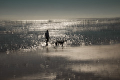 Swallowed by the surf (alideniese) Tags: icm intentionalcameramovement sunset seascape alideniese blur