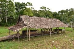 Casa de Farinha - Caucaia - Eirunepé (Cap Rech) Tags: eirunepé riojuruá caucaia amazonas amazônia
