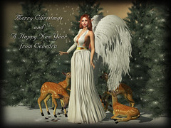 Merry Christmas (Cenedra Ashbourne) Tags: catwa catya bento belleza flf 50lindenfriday maitreya omega applier swallow truth belleepoque be weloveroleplay weloverp we3rp we3roleplay avaway blueberry jian persefona fashiowl fashiowlposes hohohunt hunt home outdoor newrelease event slevent gacha common rare firestorm firestormviewer mesh meshhead meshbody secondlife sl fashion slfashion rpfashion roleplay fantasy fantasyevent photography photoshop photoediting editing photomanipulation slphotography pixelphotography shadows dof pixels blog blogger blogpost blogspot blogging woman female avatar virtualworld