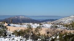 black-mountain-1902230125 (nagerfran) Tags: cactus winter desert storm snow cold freeze arizona scottsdale tontonationalforest