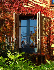 Balcony in autumn (chrisk8800) Tags: architecture balcony autumn leaves barcelona