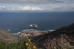 View over Atlantic Ocean (letrucas) Tags: garachico sea sky clouds skyline flowers tenerife slope canaryislands