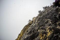 0045_GOPR4790 (marcellszmandray) Tags: ausztria hohewand gutensteinialpok alpok viaferrata kirándulás tavasz hó gebirgsvereinsteig