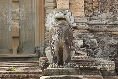 Angkor_Mebon Orientale_2014_35