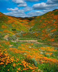 California Super Bloom (Bryan the Roving Vagabond) Tags: poppy california lakeelsinore socal ca bloom superbloom californiapoppy clouds field spring march southerncalifornia landscape mountain flower hills shadows