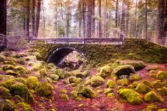 Mossy Bridge (jeandelalune) Tags: bridge moss landscape union creek oregon