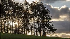 Sunset @ Trees (:: Blende 22 ::) Tags: germany deutschland thuringia thüringen eichsfeld eic landkreiseichsfeld sunset heilbadheiligenstadt sonnenuntergang 2019 trees bäume canoneos5dmarkiv ef70200mmf4lisiiusm