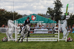 Onto the Next (meniscuslens) Tags: show jump jumping horse event arena grass sky clouds bucks county buckinghamshire aylesbury weedon