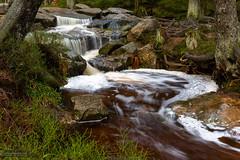 Warme Bode (Foto-Wandern.com) Tags: wasser westharz natur harz bode germany nationalparkharz tourismus wasserfaelle wasserfall nature tourism waterfall waterfalls