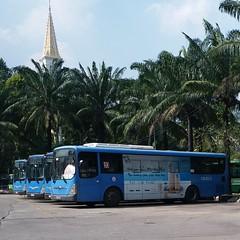 CNG buses in Ho Chi Minh city (phanphuongphi) Tags: buytsaigon cngbus ngvbus