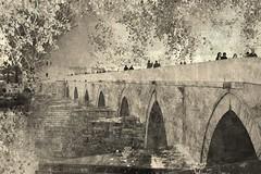 roman bridge cordoba (hmong135) Tags: romanbridge cordoba andalusia spain europe bw heritage