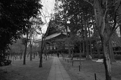 Shinnyo-dō (ababhastopographer) Tags: 階調 kyoto winter midday shinshōgokurakuji path acros graytones 京都 真正極楽寺 真如堂 冬 昼 境内 小径