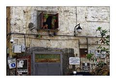 Napoli Walls 8:  Tabaggheria (Jean-Louis DUMAS) Tags: naples napoli italie italia rue street life vitrine commerce bazar reflets reflection mur wall story