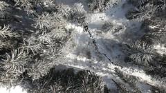 Paysage Blanc (Boutillier Geoffrey) Tags: défi châtel drone pictures photography arbres blanc neige snow cold ice eau digital photo savoie montagne mountain alpes spark dji