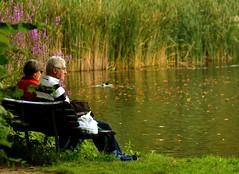 Juntos (Adrit fotografías) Tags: love amor amormaduro madurez parque park agua water pareja verde green peaceful valentinesday❤