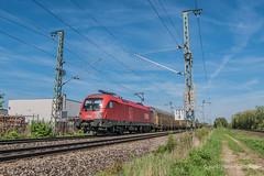 1116 266 in ARS Altmann-Diensten (ice91prinzeugen) Tags: öbb taurus rh 1116 ars altmann rca rcc trainspotting eisenbahn