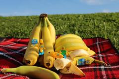 The bananas picnic. A sunny afternoon in the park. #lego #legography #picnic #LegoScenes #cenaslego #bananas #macro (LegoScenes) Tags: lego legography picnic legoscenes cenaslego bananas macro