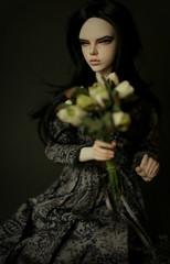 ... (dolls of milena) Tags: bjd abjd resin doll raccoon lucy portrait retro