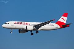 Austrian Airlines (ab-planepictures) Tags: fra eddf frankfurt flugzeug flughafen plane aircraft aviation airport planespotting
