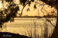 Velero (JOSE C.P.) Tags: velero gualdalquivir atardecer sunset lebrija spain andalucia boat