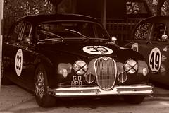 Jaguar Mk1 1959, HRDC Track Day, Goodwood Motor Circuit (1) (f1jherbert) Tags: sonya68 sonyalpha68 alpha68 sony alpha 68 a68 sonyilca68 sony68 sonyilca ilca68 ilca sonyslt68 sonyslt slt68 slt sonyalpha68ilca sonyilcaa68 goodwoodwestsussex goodwoodmotorcircuit westsussex goodwoodwestsussexengland hrdctrackdaygoodwoodmotorcircuit historicalracingdriversclubtrackdaygoodwoodmotorcircuit historicalracingdriversclubgoodwood historicalracingdriversclub hrdctrackday hrdcgoodwood hrdcgoodwoodmotorcircuit hrdc historical racing drivers club goodwood motor circuit west sussex brown white sepia bw brownandwhite