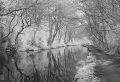 Canal Reflections (graemes83) Tags: sony infrared ir canal water black white