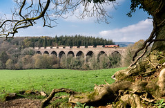 Blachford Viaduct (Rails West) Tags: 6c53 blatchford chinaclay class66 devon ews66 locations viaduct 66030