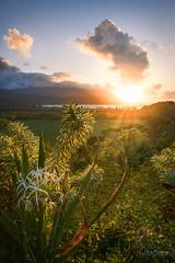 Kalalau Valley Lookout II (sberkley123) Tags: ngc flickrsbest princeville longexposure tamron beach ocean sunset z7 kauai 2470mm kalalauvalleylookout usa hawaii pacific kalalau