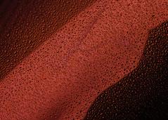 Red Rain (justingreen19) Tags: 7worldtradecenter balloonflower financialdistrict jeffkoons jeffkoonsnewyork koons ny nyc newyork newyorkrain newyorkcity worldtradecenter abstractart art beadsofwater justingreen19 lowermanhattan manhattan metal metallic metallicred publicart rain raindrops red redrain reflecting reflection sculpture stainlesssteel streetart surface texture urban urbanabstract urbanart water waterbeads weather
