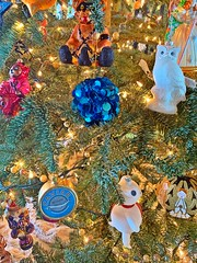 December 2018 (JeremiahChristopher) Tags: december 2018 christmas christmastree cats catsmas jasparjonze flynncaspar losangeles californiachristmas hollywoodhills hollywoodchristmas christmasornaments ornaments polonaiseornaments polonaise glassblownpolishornaments dayofthedead sugarskulls kitties jeremiahchristopher