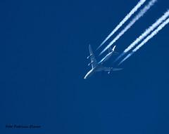 air-bridge image
