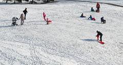 019Jan 04: Winter Snow Slope Traffic (Johan Pipet 2M+ views) Tags: flickr snow sneh winter zima slope svah fun enjoy kids families deti rodiny ski sunny urban city mesto park slide bratislava dubravka slovakia slovensko eu europe palo bartos bartoš canon g7x powershot