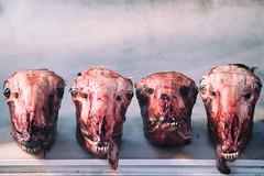 dead (Al Fed) Tags: 20181111 athen athens greece dead meat fly four row kind heads animals butcher imaveggie veggie eatingdeadanimalsistotallyyesterday