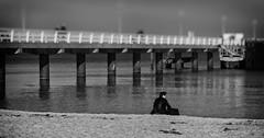 The talented draughtsman (michael_hamburg69) Tags: timmendorferstrand ostholstein germany deutschland ostsee balticsea seebrücke pier people menschen monochrome beach strand timmendorf lübeckerbucht man male guy draughtsman zeichner künstler artist
