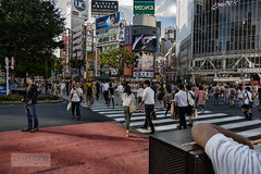 Peatones en Shibuya Tokyo 2012