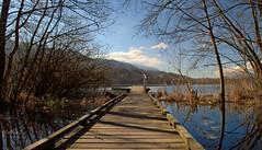 Belles perspectives ... (Evim@ge) Tags: lac lake savoie reflet refection bleu blue eau water paysage landscape quiet calme outside extérieur printemps spring arbres trees