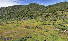 SW-wards view from Lumiang cave area to Bugang-Balugang barangay. Sagada-Mountn.province-Philippines.0223 (rweisswald) Tags: landscape view panorama outlook perspective sight mountain hill rice paddy terracedfield crop stonewall mudwall contour carving pondfield irrigationsystem farming valley sustainableagriculture agroecosystem traditionaltechnique oryzasativa village hamlet house townhouse cottage cabin hut shovel shed orchard vegetable greenness greenery tree greenforest jungle rainforest lumiangcave sumaguingcave bugangbarangay balugangbarangay sagadamunicipality mountainprovince cordilleraregion luzonisland philippines