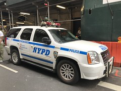 NYPD Transit Canine Unit GMC Yukon (NY's Finest Photography) Tags: highway patrol state nypd fdny ems police law enforcement ford dodge swat esu srg crc ctb rescue truck nyc new york mack tbta chevy impala ppv tahoe mounted unit service squad dcu windshield road