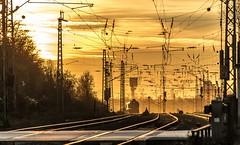 34_2019_02_14_Gelsenkirchen_Bismarck_1266_435_DB_247_035_ECR_mit_Brammenzug ➡️ Herne_Abzw_Crange (ruhrpott.sprinter) Tags: ruhrpott sprinter deutschland germany allmangne nrw ruhrgebiet gelsenkirchen lokomotive locomotives eisenbahn railroad rail zug train reisezug passenger güter cargo freight fret bismarck db ccw de efm eh eloc hctor rpool pkpc spag 323 0077 0275 0632 1225 1265 1266 1275 3294 6145 6156 6185 6186 6189 6241 9123 9124 captrain ecr ell hectorrail lotos setg spitzke museumszug schrottzug logo natur outdoor graffiti wildgänse flugzeug sonnenuntergang airbus 380