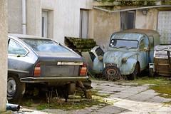 DSC_4289 (azu250) Tags: oldtimerbeurs reims 32 salon champnois belles champenoises 32eme 2019 voitures collection oldtimer car citroen cx ak 350