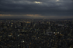 Fade to Night (courtney_meier) Tags: arakawariver irumariver japan tokyo tokyoskytree buildings cityscape clouds confluence evening magichour night skyline sunset urban