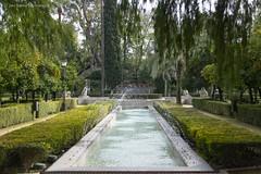 20190331-Unelmatrippi-Parque-Maria-Luisa-DSC0647 (Unelmatrippi) Tags: sevilla seville espanja spain parquedemaríaluisa maríaluisapark europe eurooppa